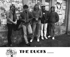 The Ducks - Click for larger image!